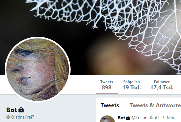 Kristina Kral Twitter Follower Januar 2019