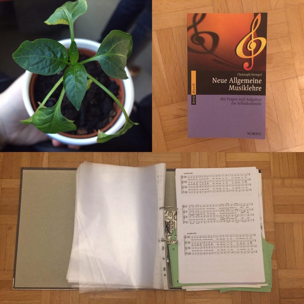 Kristina Kral #145 Chilipflanze Musiklehre Buch Ordner mit Notenblättern