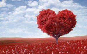 Symbolbild: Liebe